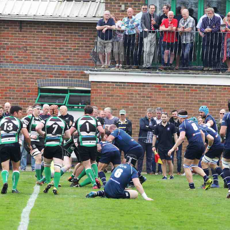 TOTTONIANS 43-47 BRIGHTON BLUES