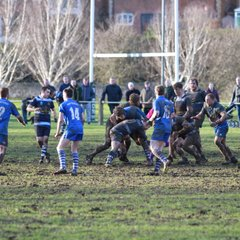 1st XV vs Pontefract -  4 March 2017