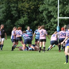 Ripon Bluebelles v Halifax Ladies