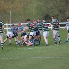 Ripon 1st XV v Old Grovians