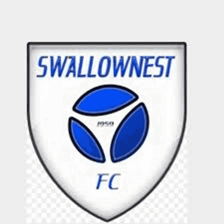 Swallownest Preview