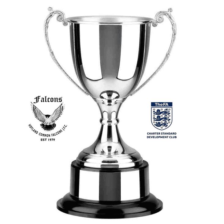 Hoyland Common Falcons Summer Football Tournament - 6th/7th July 2019