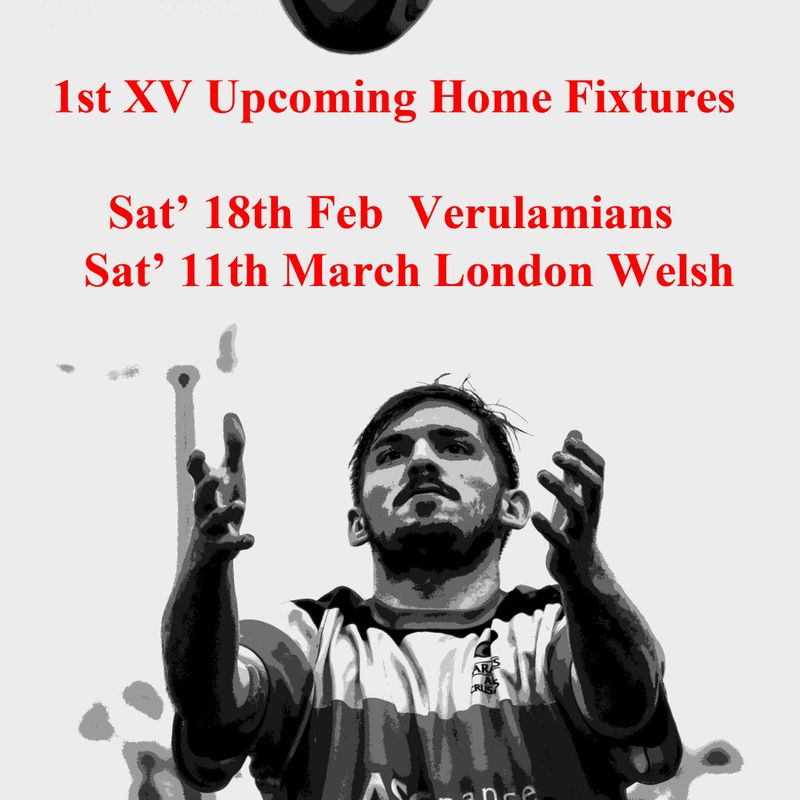 1st XV Home Fixtures