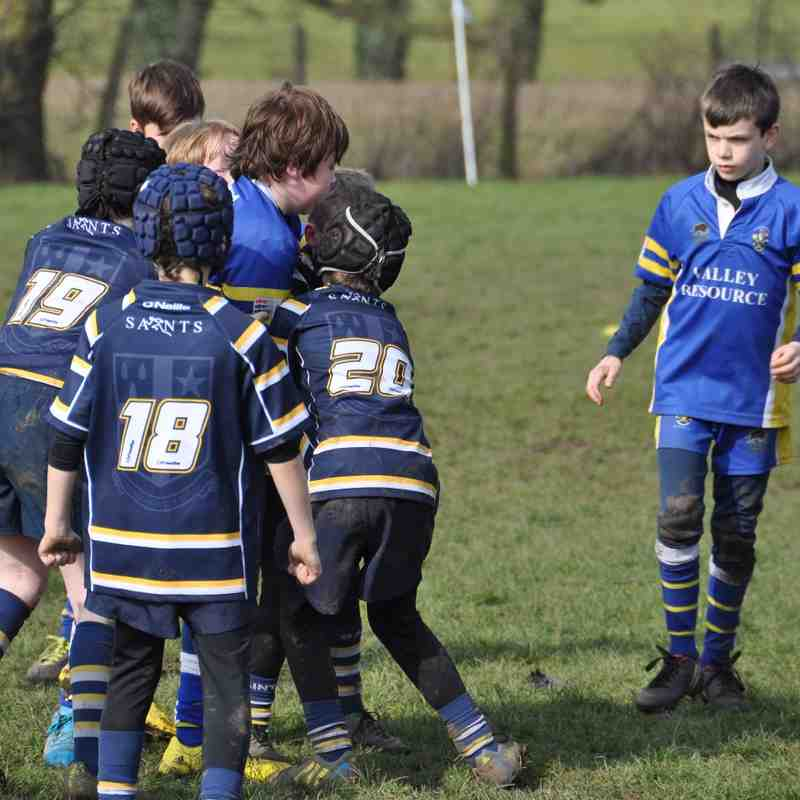 Saints U10s V Knusford U10s