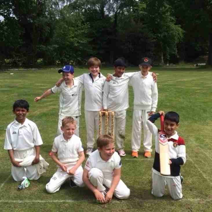 Bagshot CC Colts Yearbook 2016