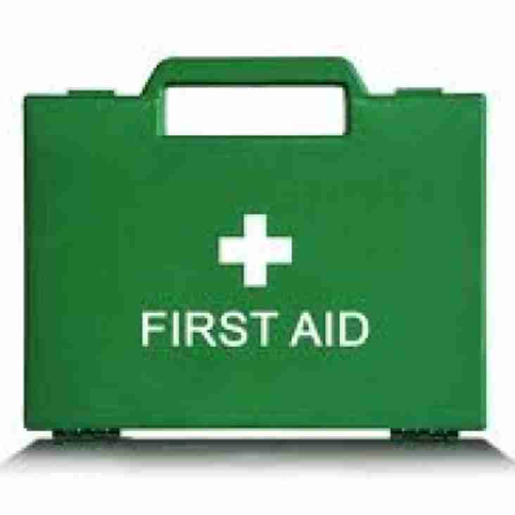 Minis and Juniors First Aid Course