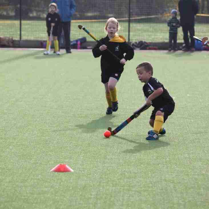 Junior Hockey Season Starts