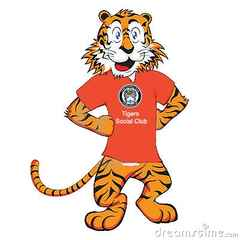 Hyde United Tiger Kitty