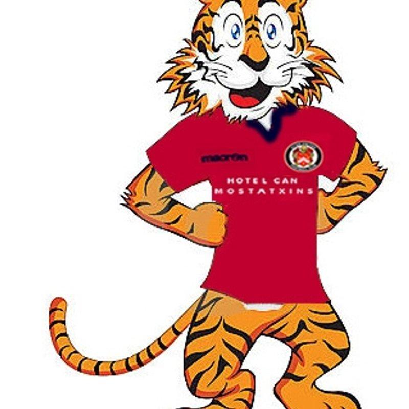 Aprils Tiger Kitty Winners
