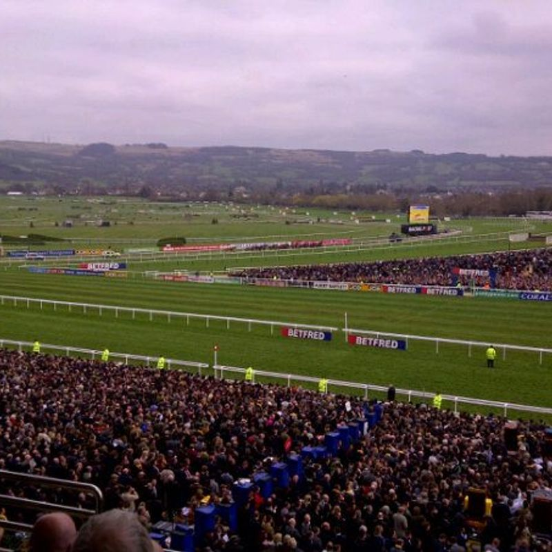 Anyone Fancy a Day at the Races?