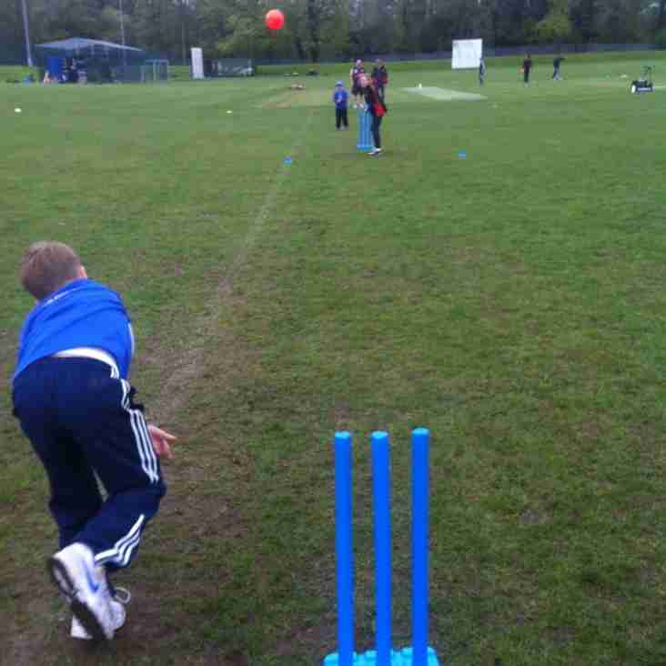 RHC Kwik Cricket Festival Wrap-Up