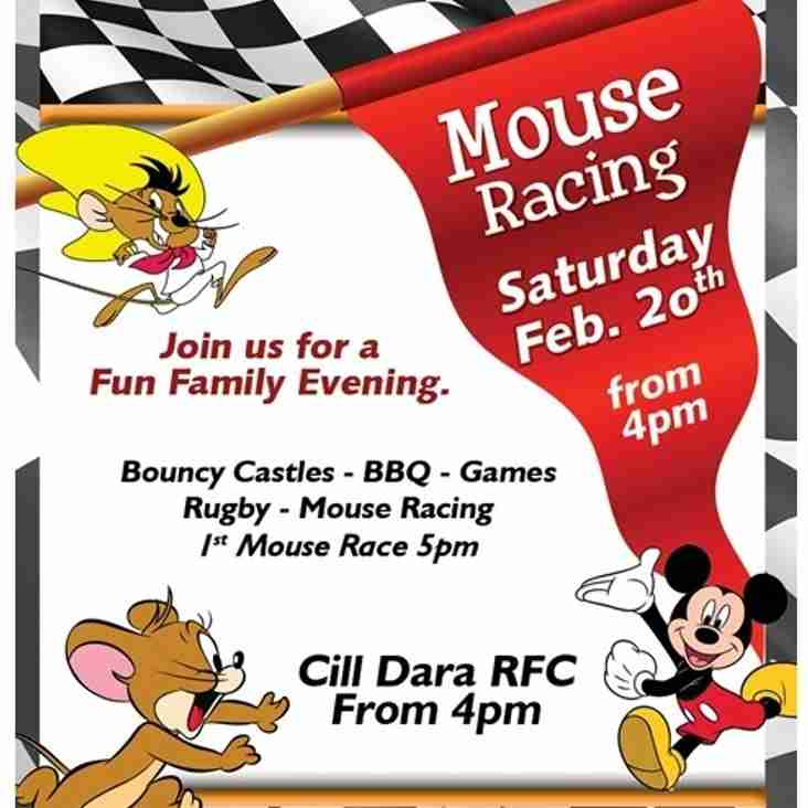 Mouse Racing in Cill Dara