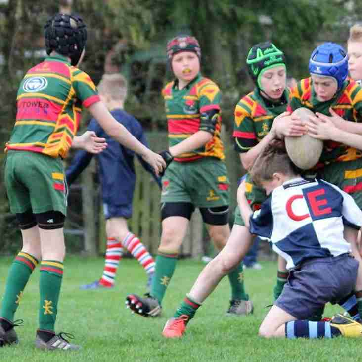 Festival, a big hit for U10s