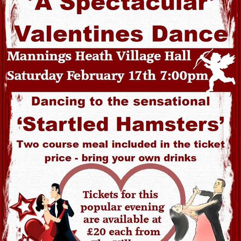 Valentine Dance in Aid of NCC