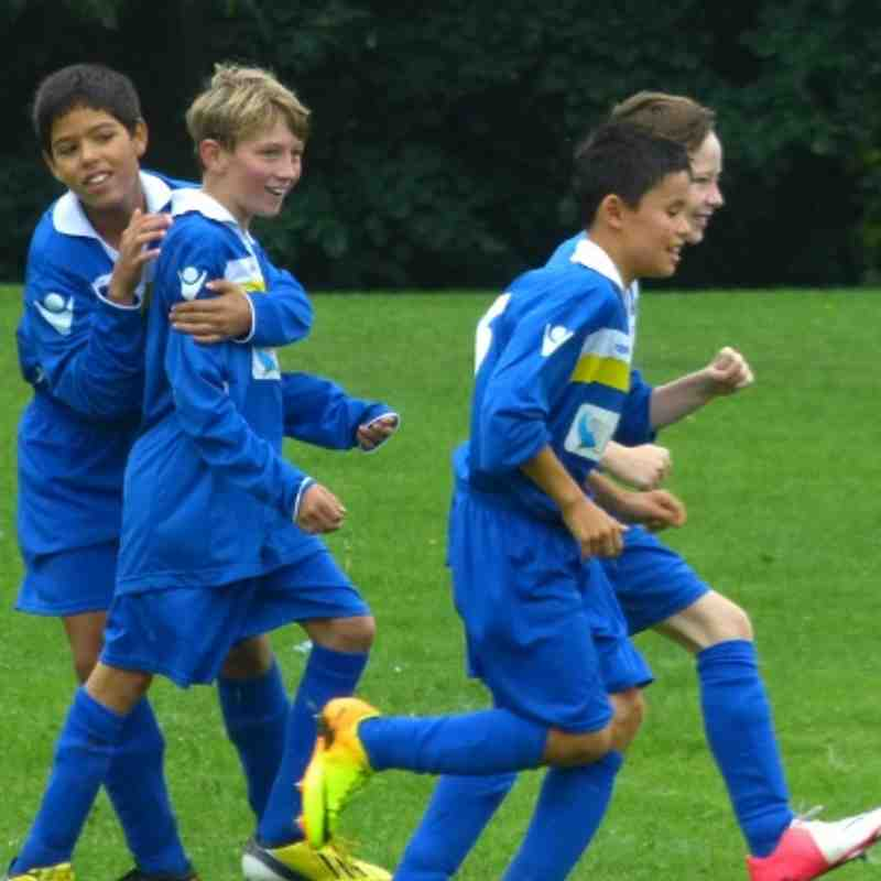 TFA Totteridge 3 - 7 Wealdstone U12B Cup Game