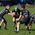Colts fall just short in close game with Brixham