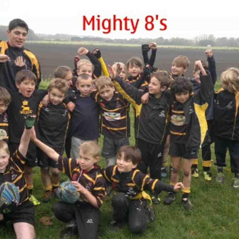 Mighty 8's