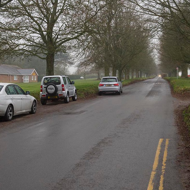 Yellow line proposals supported by the Town Council for Frees Avenue <