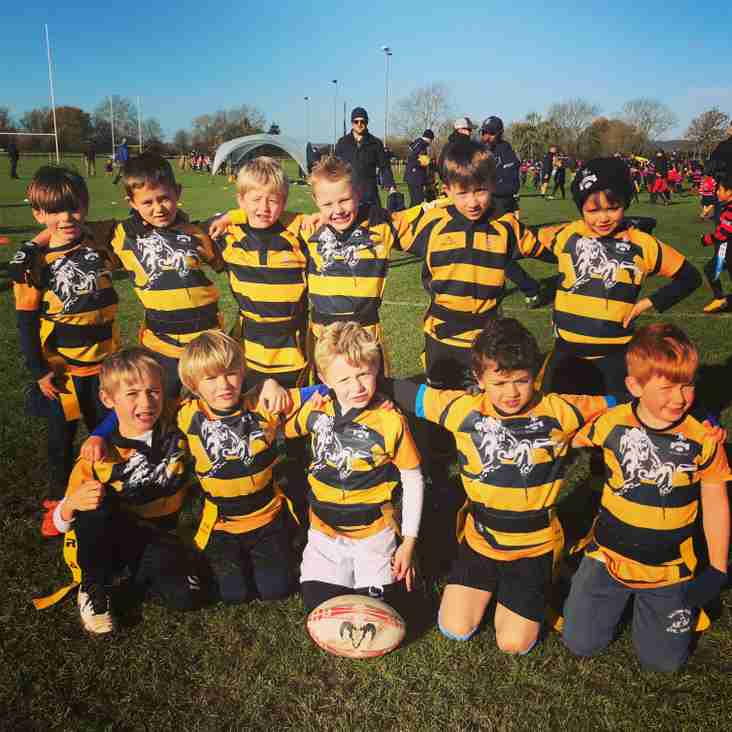 Under 7's first festival huge success