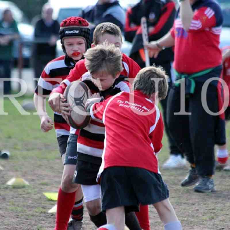 Teignmouth U10's Vs. Exeter Saracens