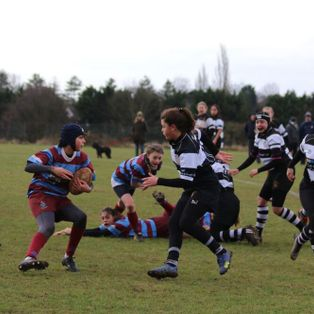 Resolute defence from U15 girls not enough against strong Sutton side