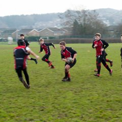 Stags v Panthers