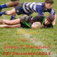 Staags v Mansfield