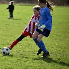 Under 11 Girls v Grimsby - 14th February 2016