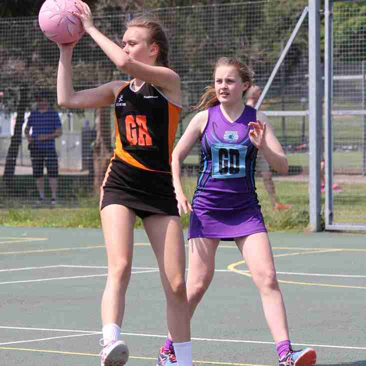 Rushmoor Netball Tournament - SATURDAY 13TH MAY 2017