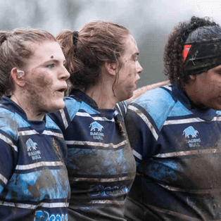 Ripon Bluebells & Malton Ladies