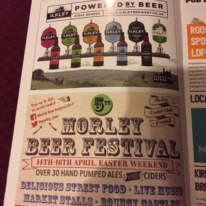 Beer Festival Marketing Update
