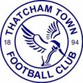 REPORT: Yate Town 1-1 Thatcham Town