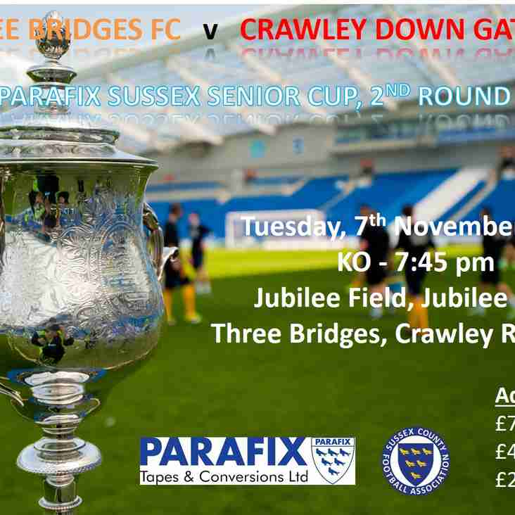 Three Bridges  v  Crawley Down Gatwick - 7 November