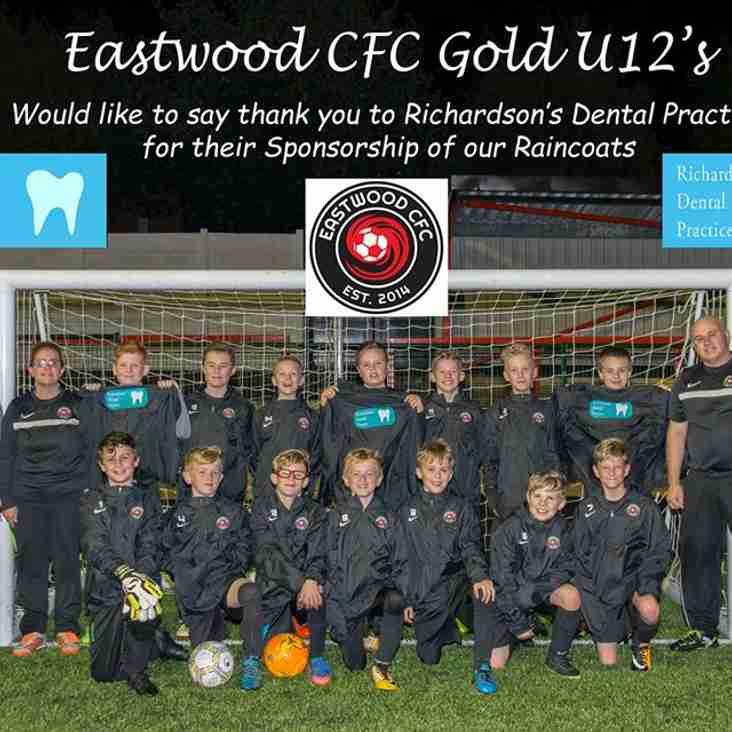 Eastwood CFC Saturday U12 Gold Season Review