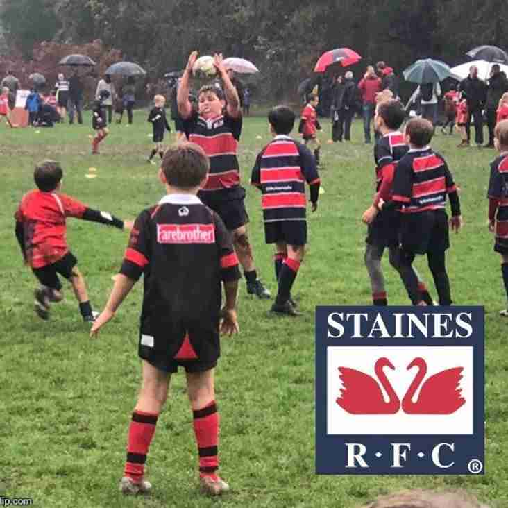 Harlequins U11 and U12 Land Rover Cup Festival