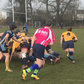 Gazelles Promotion to SW1 One Step Closer