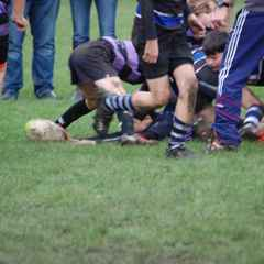 Clifton v Bath U12s
