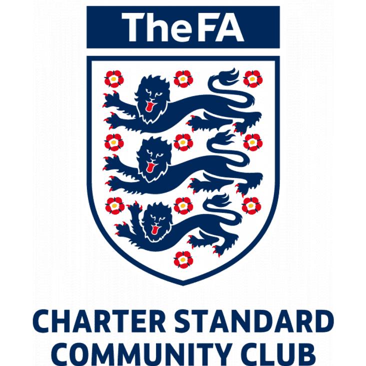 Lancing FC achieve Community Club status