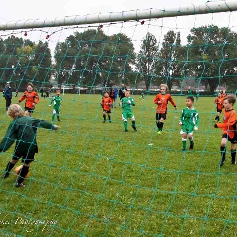 Walton Casuals Wolves by Tracey Whicker Photography