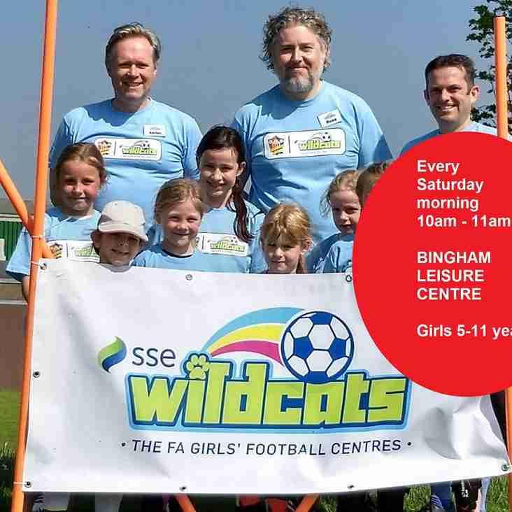 Wildcats at Bingham Leisure Centre