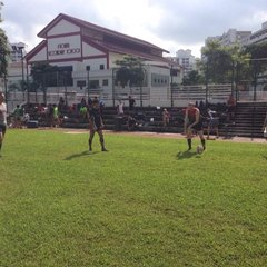 Les Vieux Chefs v Pioneer Old Boys - 30th November 2014