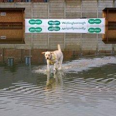 floods 2012/2013