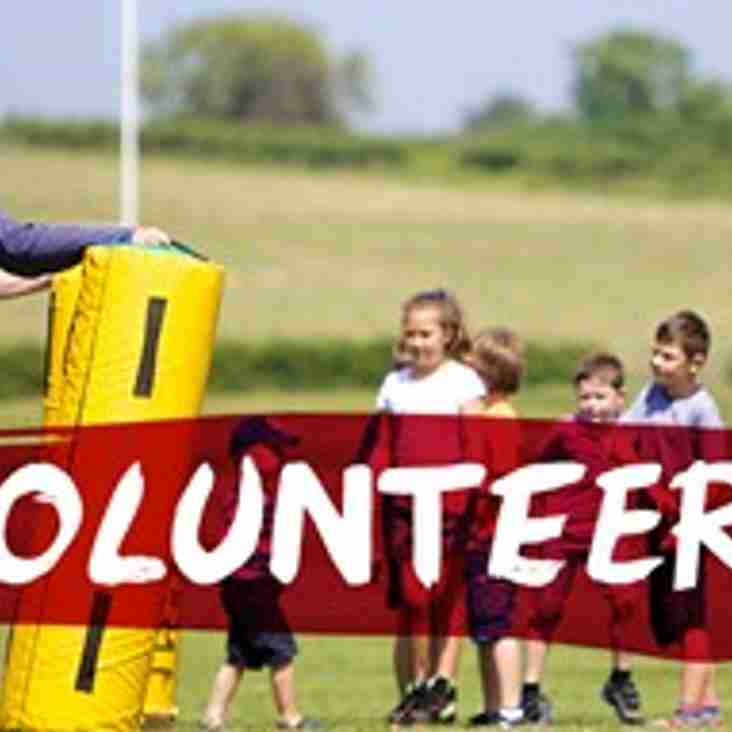 Volunteers - Vacant Posts  (updated 26th February)