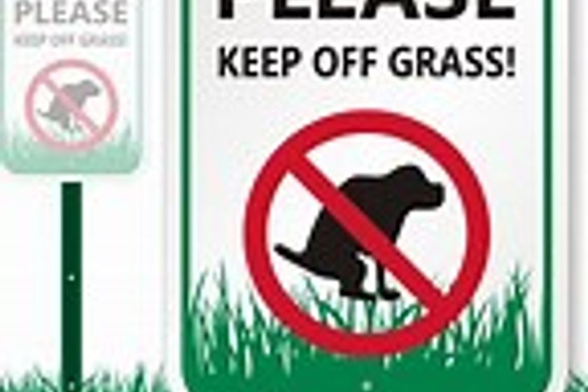 Dogs are not allowed on any of the grassed areas