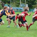 Puddletown RFC v Ellingham & Ringwood II