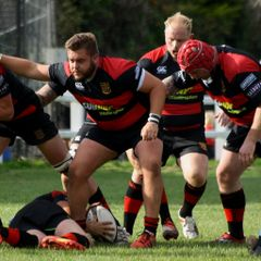 Wellington 28 Cheltenham 14