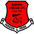 Oldland Abbotonians vs. Bishops Lydeard