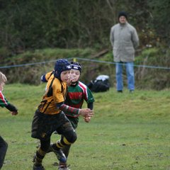 Under 10 at home v West Hartlepool