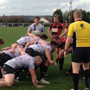 Stags Hunted Down By Wanderers