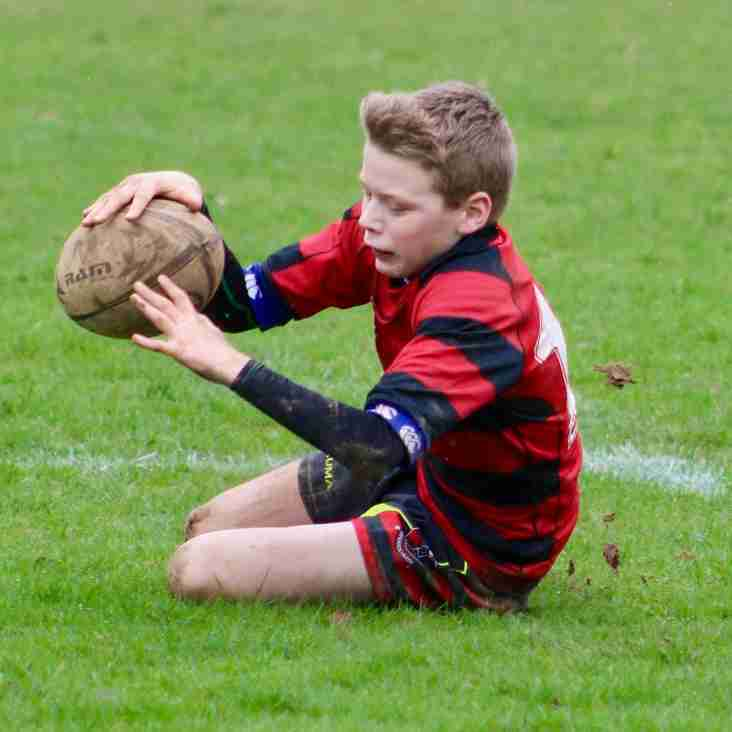 Heath Under 12s hit top form